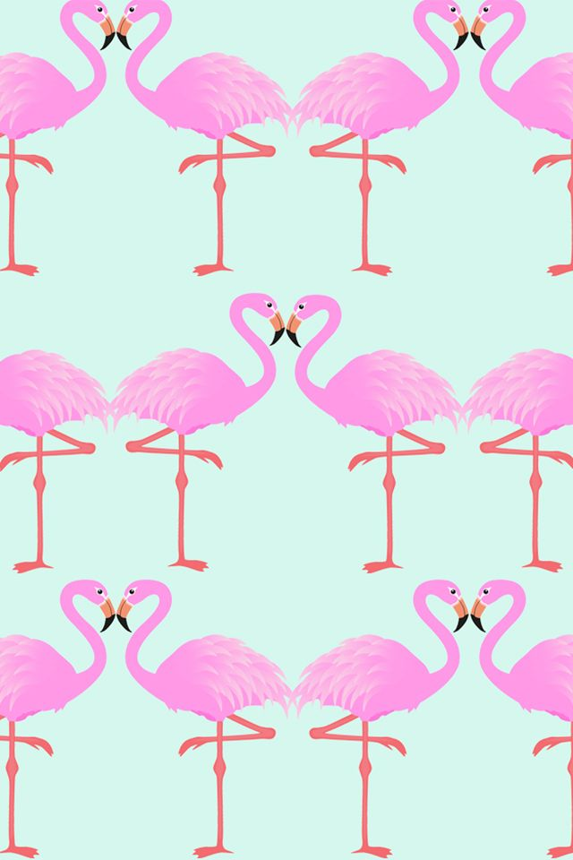Flamingos.jpg 640×960 píxeles
