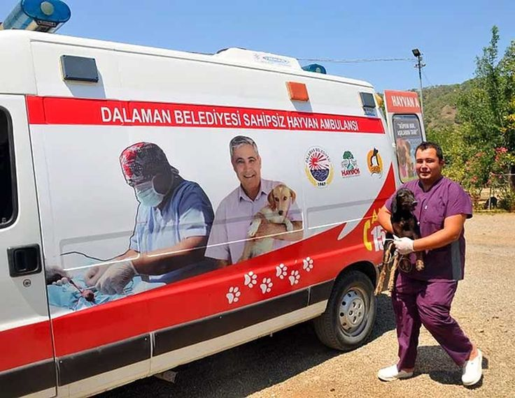 Darısı diğer belediyelerin başına: Ortaca ve Dalaman'da yardıma muhtaç hayvanlar için ambulans hizmeti.. Detaylar ajanimo.com'da.. #ajanimo #ajanbrian #hayvan #animal #ajanimo #ajanbrian