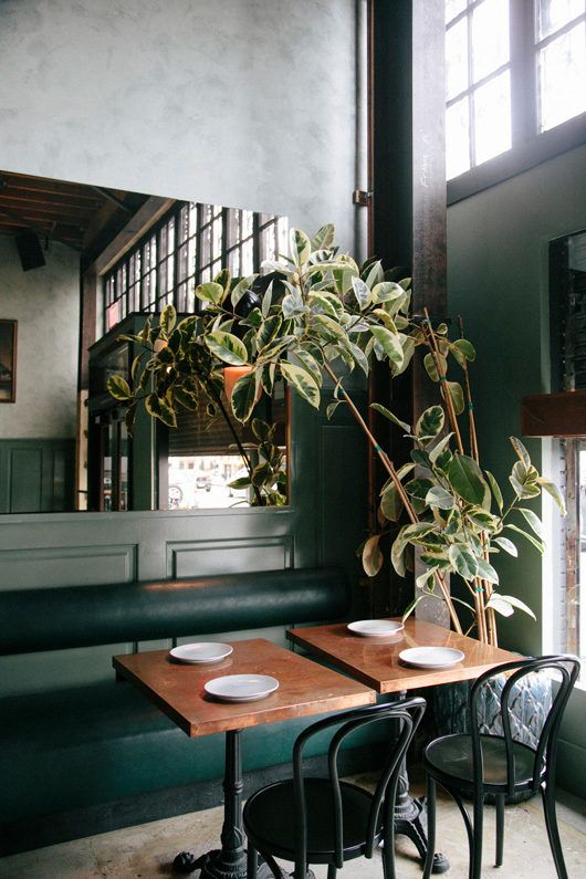indoor plants and decor at cafe birdie. / sfgirlbybay