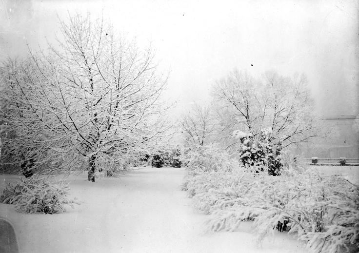 Winter at Queen Victoria Park Niagara FallsNiagara Fall