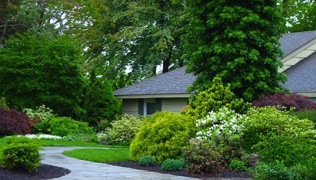 front yard landscaping privacy - Google Search