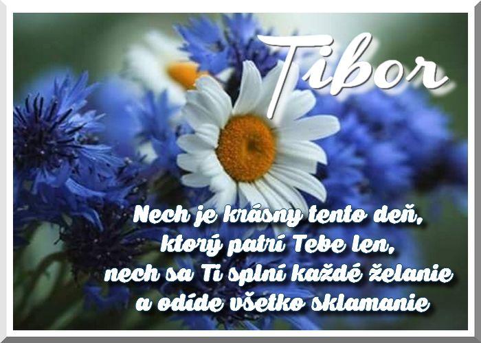 Tibor Nech je krásny tento deň, ktorý patrí Tebe len, nech sa Ti splní každé želanie a odíde všetko sklamanie