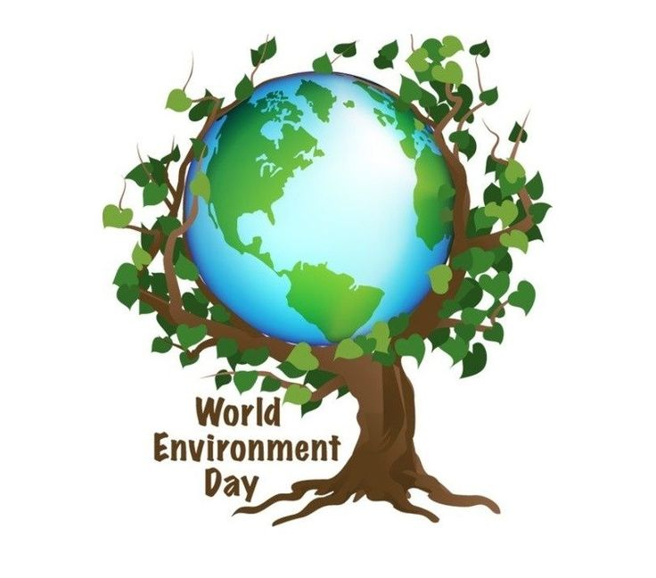 5 June World Environment Day 2017 | Themes & Slogans on Environment