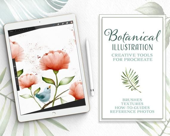 Botanical Illustration Toolkit For Procreate App On Ipad