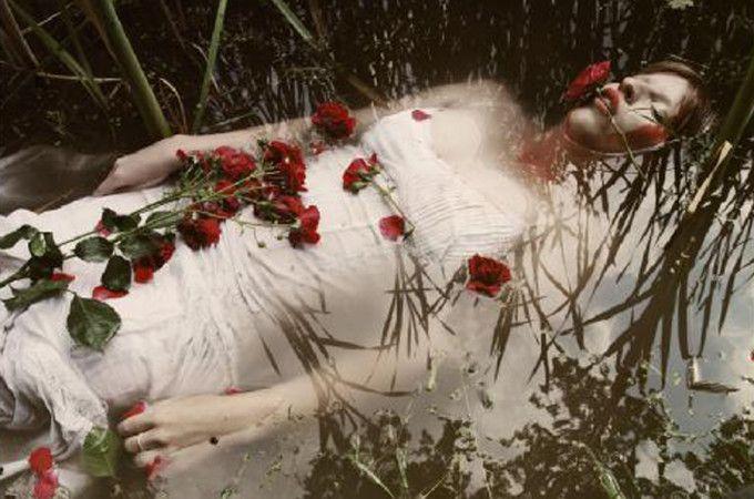 Where the wild roses grow - MISTÉRICA