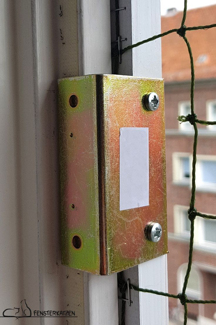 Fenstersicherung Für Katzen Ohne Bohren Sonja Weihermann Katz Eund Hund Blog Fenstersicherung Hund Diy Katzen