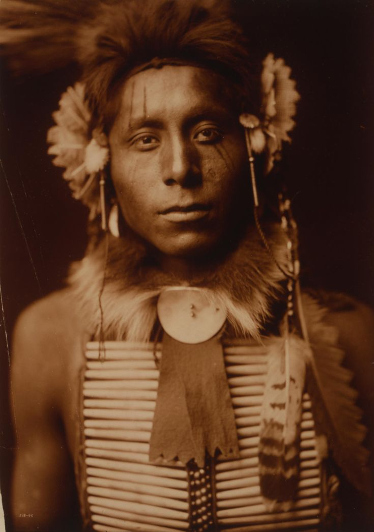 Sitting Eagle, by Edward S. Curtis, ca.1905