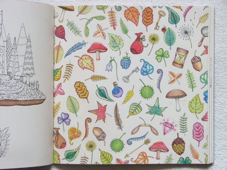 Johanna Basford, Enchanted Forest adult coloring book.