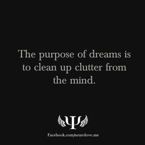 Psychology Facts  the purpose of dreams is to clean up clutter from the mind.  interesting idea.