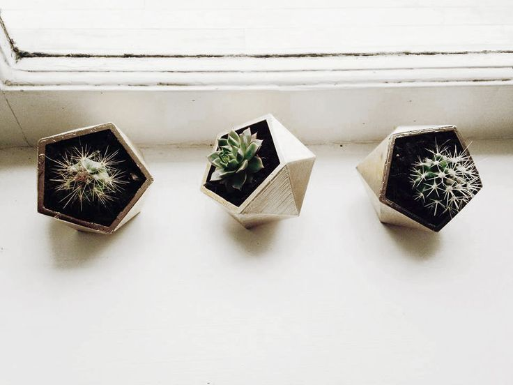 Without geometry, life is pointless. Geometric Planters.  NZ $43 @ OYeahNah