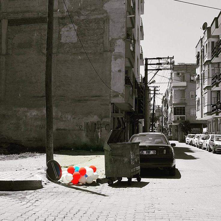 #turgutlu#sokak#street#balon#baloon#renkler#colours#siyah#beyaz#white#balck#daily#agac#interesting#arkasokak#backstrret#art#sanat#amator#amatour#fotoğraf#photograp#photographie#panorama#wiev#manzara#instagood#instamood http://turkrazzi.com/ipost/1515291812641968227/?code=BUHZeAPlRBj