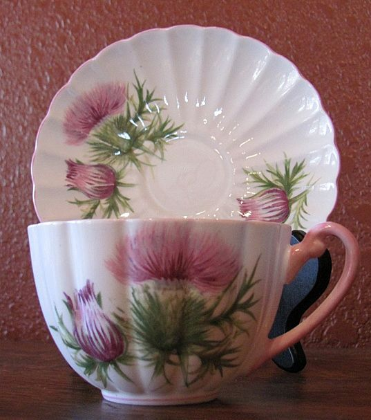 c. 1955 Shelley Fine Bone China Thistle Pattern Teacup and Saucer  rubylane.com