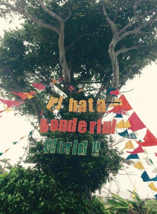 沖縄で最大級のフェス