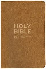 NIV Traveller's Soft-tone Bible New International Version