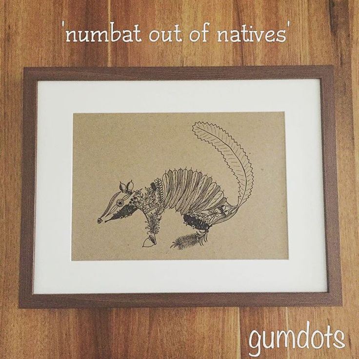 Who wants this guy hanging on their wall? Prints are now available in both white or brown, 100% recycled paper. A4, unframed prints are $25 (+p&h) with $5 from the sale if each going straight to @project.numbat to help support numbat conservation! Framed prints are also available. Contact me if you're interested! gumdots@outlook.com
