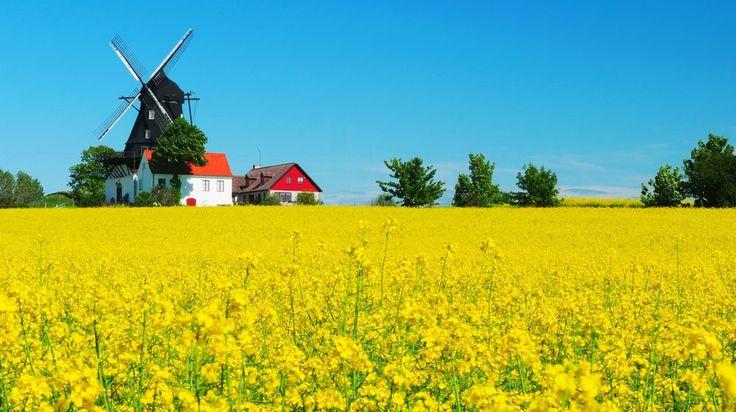 Skåne är inte bara synonymt med spettekaka, solgula rapsfält och Zlatan. Det betyder också milsvida sandstränder, spännande slott och fantastiska...