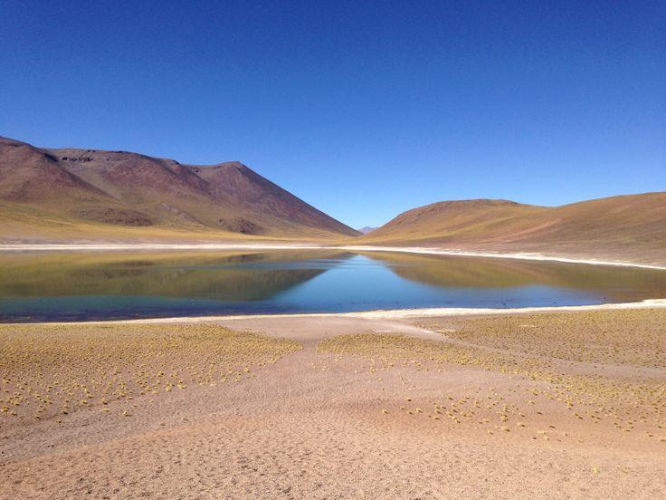 Laguna altiplánica. San Pedro de Atacama, Chile #landscape