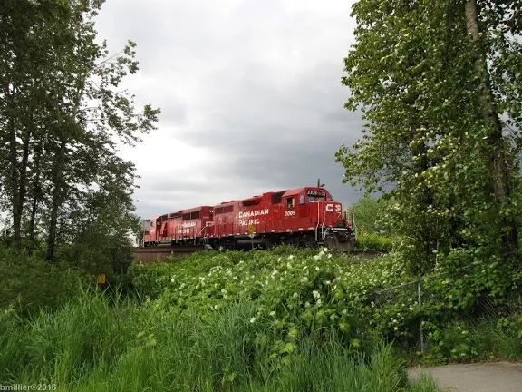相片:SXX6_5586 CP Rail GP38AC 3009 GP20C-ECO 2234 lead grain train east Mi109.6 Cascade sub Pitt River Bridge Pitt Meadows BC Apr28 16