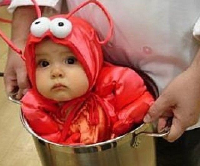 Something's cooking in the kitchen and it's deliciously adorable. The baby lobster costume is a two piece ensemble that'll transform your tiny tot into an impossibly cute sea critter ideal for complementing your chef costume.