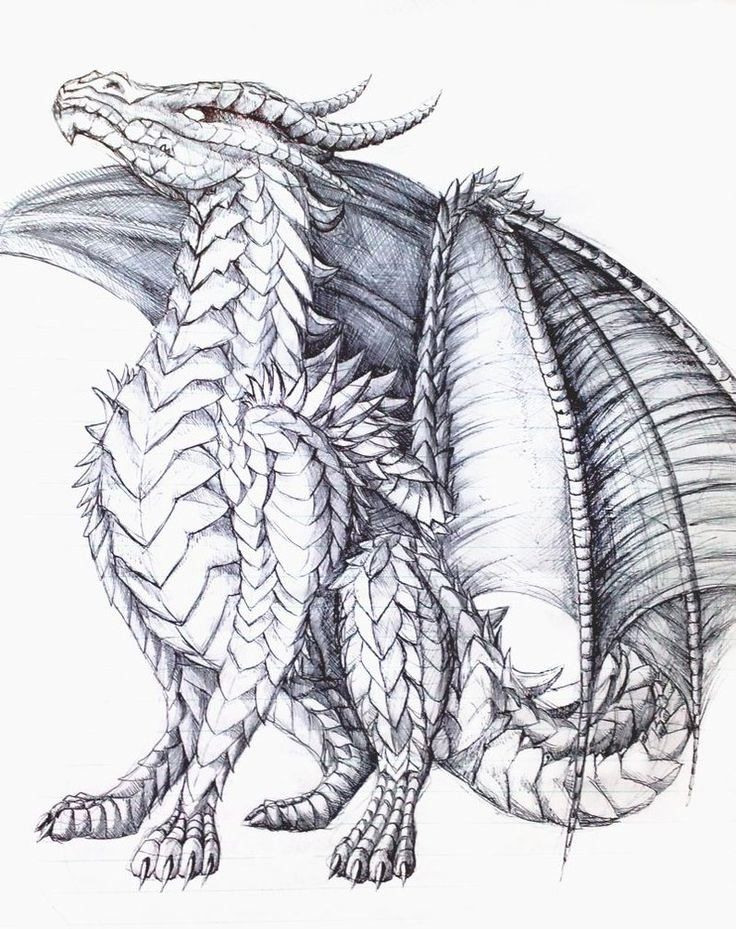 Dragon Coloring Book for Adults Luxury the Proud E by ...