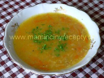 Rychlá a zdravá polévka
