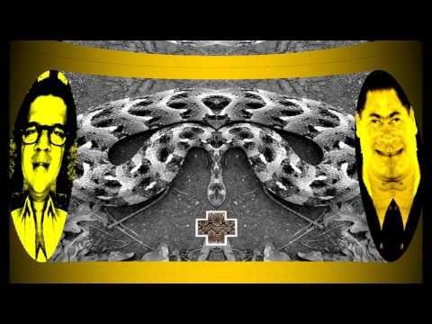 Provincial Snake Jazz