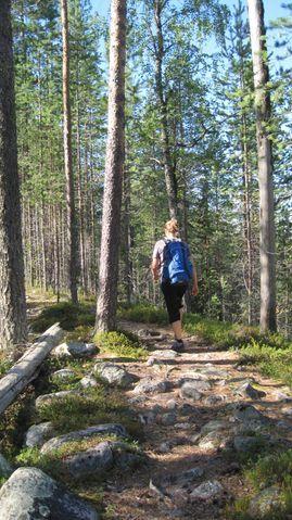 Hiking in Kylmäluoma, Taivalkoski, Lapland, Finnland