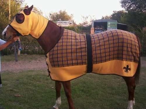 diseño abrigo caballo
