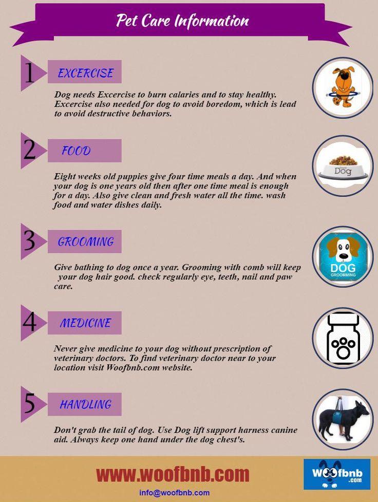 #PetCareInformation, #PetFoodsOnlineIndia,  #Petgroomingserivces #BookPetSitters, #Woofbnb