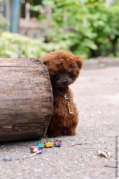Forest )) - коричневый,мишка тедди,мишка,медведь,медвежонок,подарок,лучший друг
