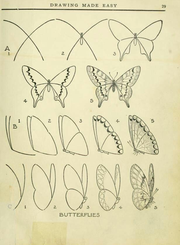 Butterflies made easy