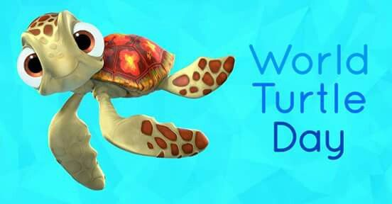 May 23 national turtle day