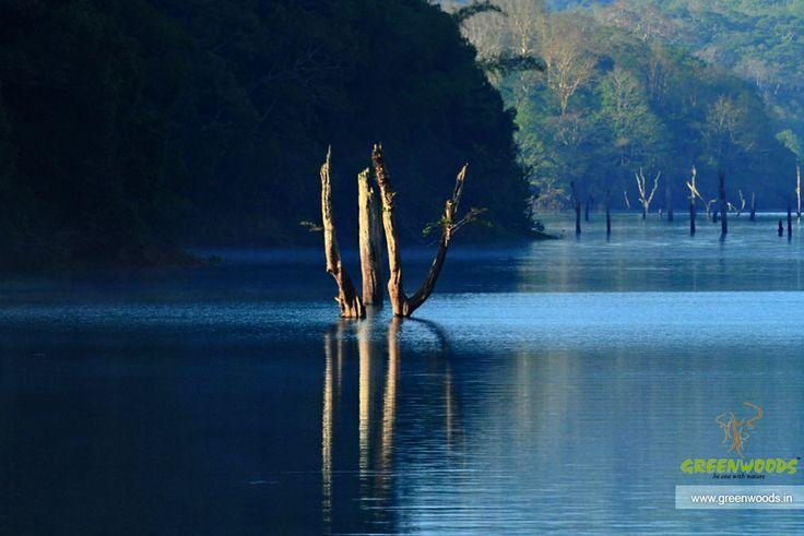 Beauty of Thekkady, Kerala