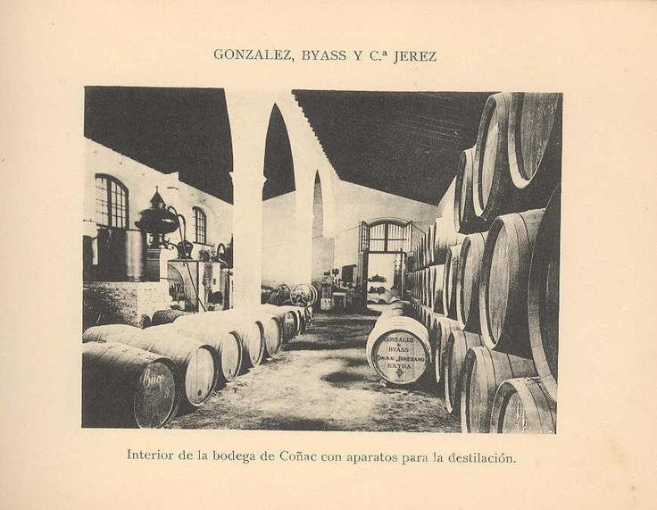 Interior de la bodega de Brandy con aparatos para la destilación.