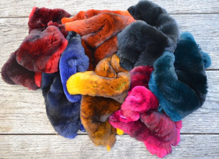 Wonderful colours of Rexcellence Rex furs. For offer: info@profurgroup.hu