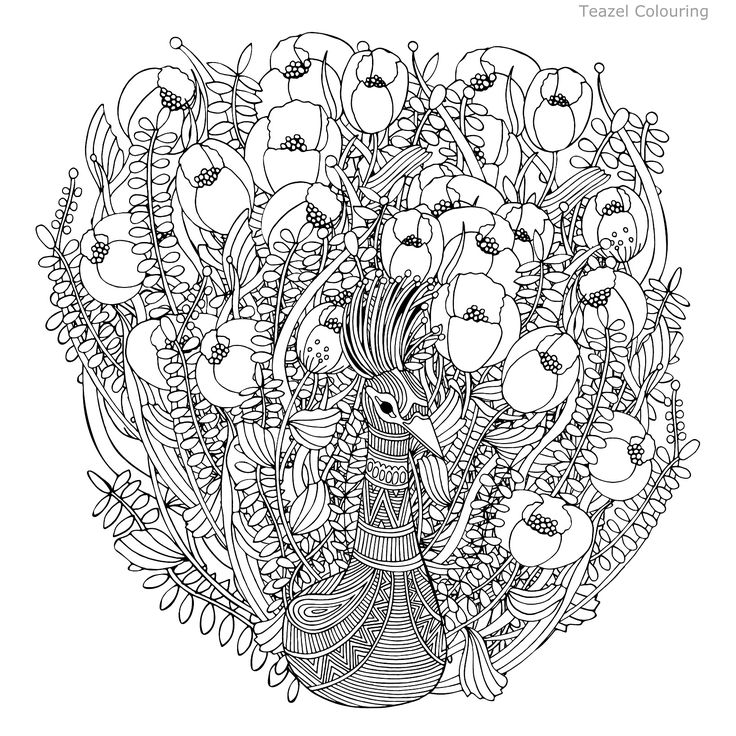 Fantastic Bird With Exotic Flowers And Leaves Black White Colors Adults Coloring Book Page In Vector