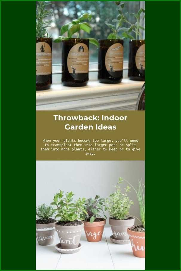 Easy Methods To Garden Similar To A Pro Indoor Garden Ideas