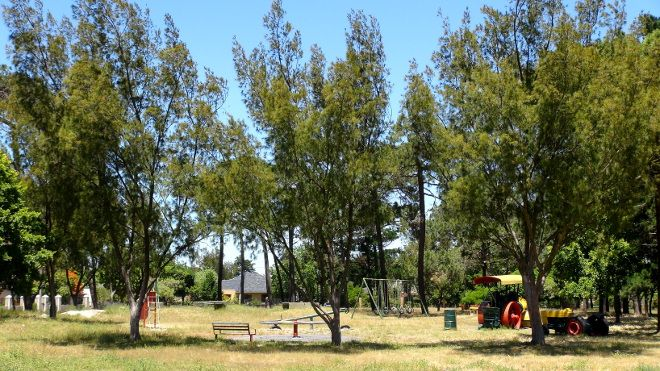 Coronation Park in Pinelands, Cape Town