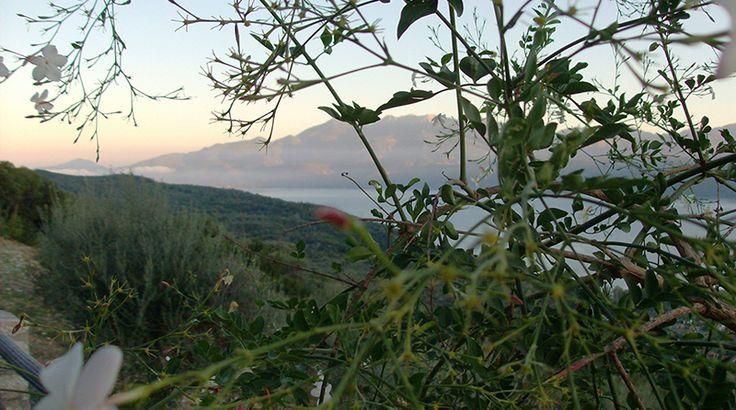 Κρυφτό με τη λίμνη Τριχωνίδα | Lifebook