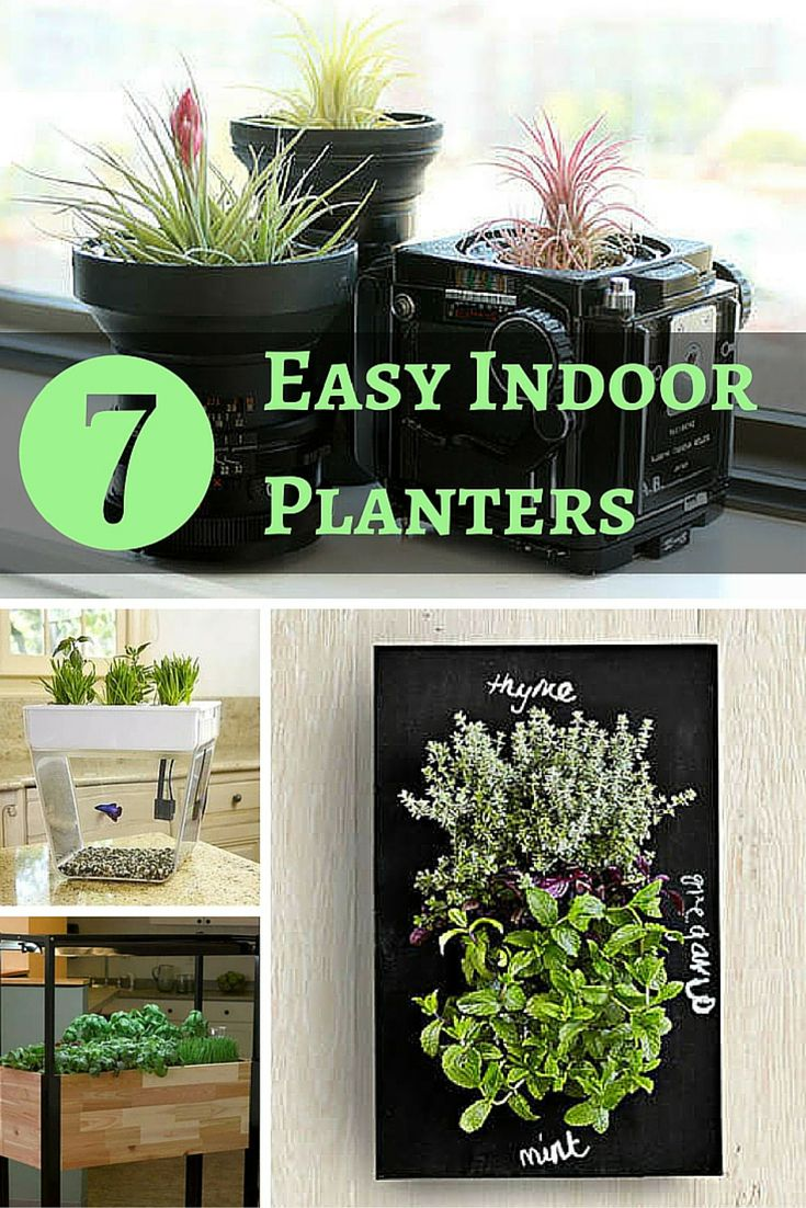 Get The Easiest Indoor Garden Ever. These Cool Planters Do All The Hard  Work For
