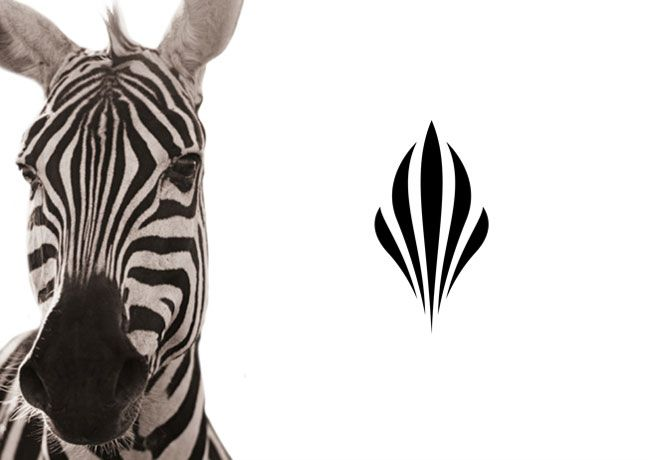 Zebra inpired logo by Glazer for african luxury hotel Sankara