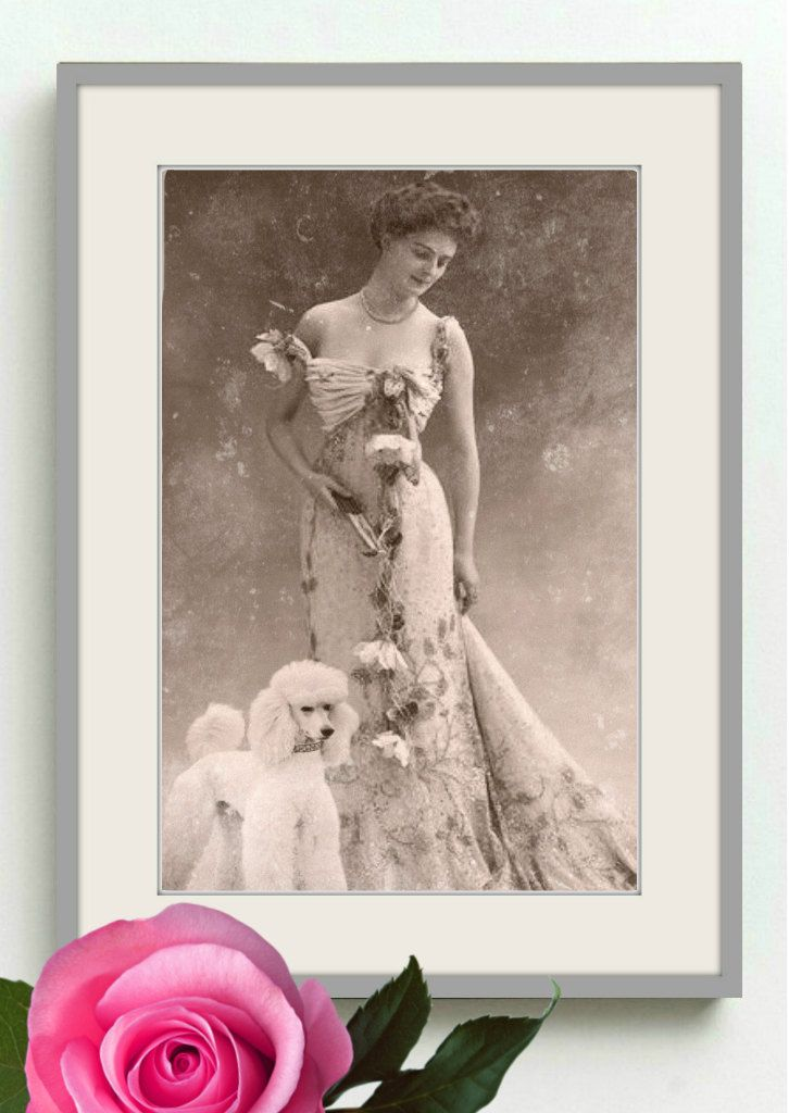 Vintage image altered art,1920s,Image Instant Download,Print,Lady and Dog. by DemiArtDemi on Etsy