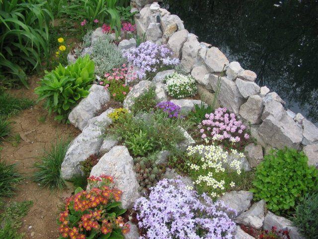 jardin de rocaille avec une murette en pierre et plantes en couleurs vives