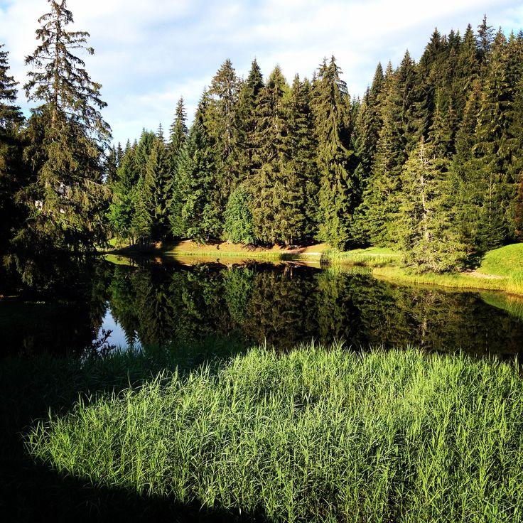 Le lac des Joncs #LesPaccots #fribourgregion #switzerland #swisslake