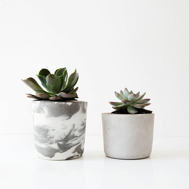 Marble vs simplistic ❤ You can win this marble planter  see two posts back to find out how