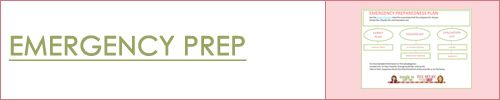 (11/2012) Emergency Preparedness Basics   Food Storage Made Easy.  Links to blog, plans, purchase etc
