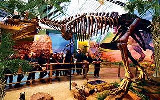 Avrupa'nın en büyük dinozor temalı eğlence ve eğitim parkı!