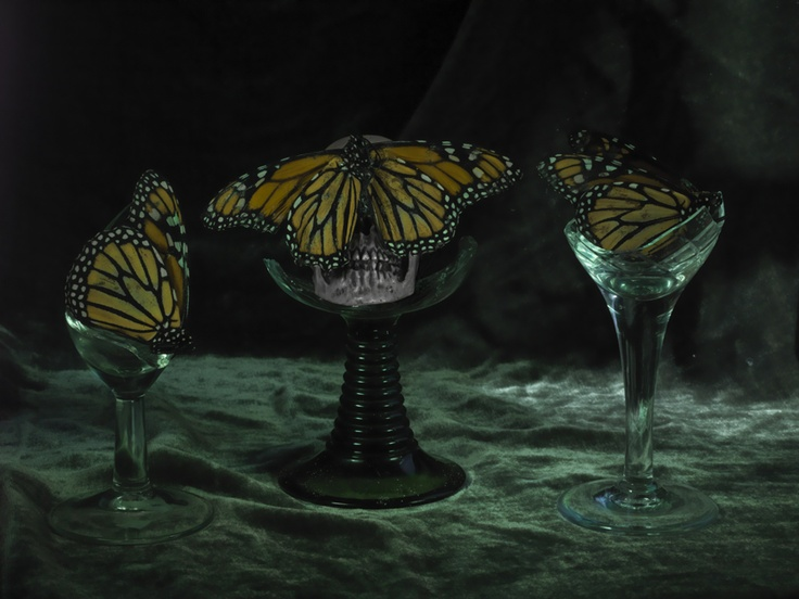 Still Life with 3 Monarchs and # Broken Wine Glasses 2012, by Fiona Pardington.