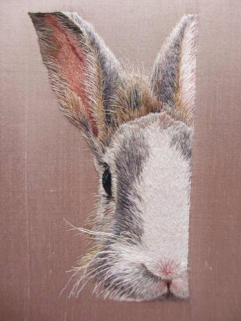 #conejo