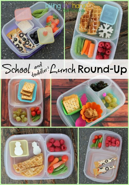 Kindergarten and Toddler school Lunch Round-Up! with @EasyLunchboxes